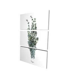 Canvas 24 x 36 - 3D - Thyme leaves bundle - fr