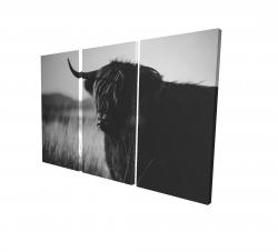 Canvas 24 x 36 - 3D - Beautiful monochrome highland cow