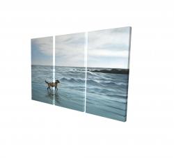 Canvas 24 x 36 - 3D - Dog on the beach