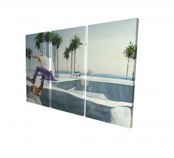 Canvas 24 x 36 - 3D - Skate park