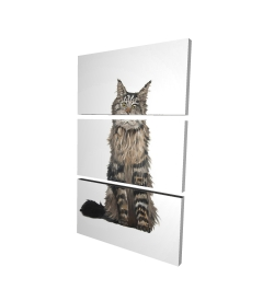 Canvas 24 x 36 - 3D - Maine coon cat