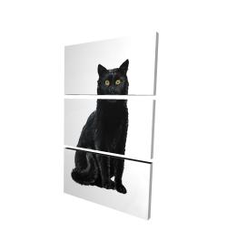 Canvas 24 x 36 - 3D - Black cat