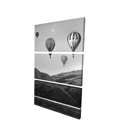 Canvas 24 x 36 - 3D - Air balloon landscape