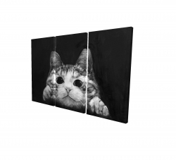 Canvas 40 x 60 - 3D - Curious cat