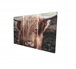 Canvas 24 x 36 - 3D - Desaturated highland cow