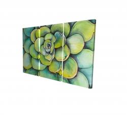 Canvas 24 x 36 - 3D - Watercolor succulent plant