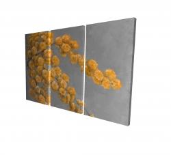 Canvas 24 x 36 - 3D - Golden wattle plant