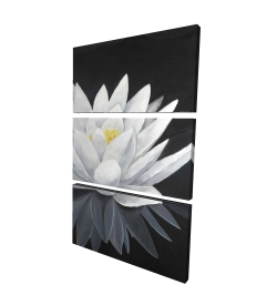 Canvas 24 x 36 - 3D - Lotus flower with reflection