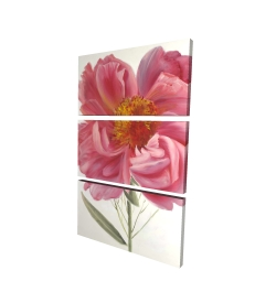 Canvas 24 x 36 - 3D - Pink peony flower