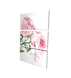 Canvas 24 x 36 - 3D - Watercolor pink roses