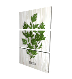 Canvas 24 x 36 - 3D - Cilantro on wood