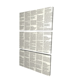 Canvas 40 x 60 - 3D - Newspaper