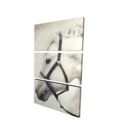 Canvas 24 x 36 - 3D - Darius the white horse