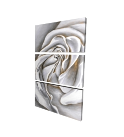 Canvas 24 x 36 - 3D - White rose delicate