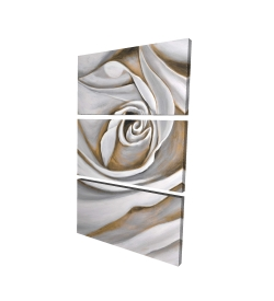 Canvas 40 x 60 - 3D - White rose closeup