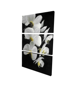 Canvas 24 x 36 - 3D - Beautiful orchids