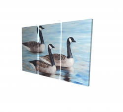Canvas 24 x 36 - 3D - Canada geese in water