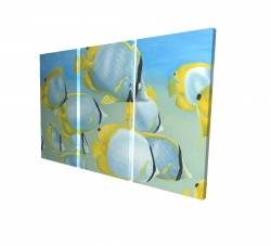 Canvas 40 x 60 - 3D - Butterfly fishes