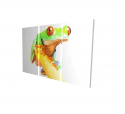 Canvas 24 x 36 - 3D - Curious red eyed frog