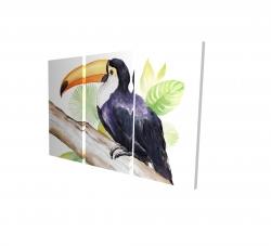 Canvas 24 x 36 - 3D - Toucan perched