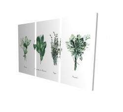 Canvas 24 x 36 - 3D - Fines herbes