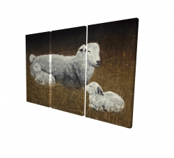 Canvas 24 x 36 - 3D - Sheep and lambs