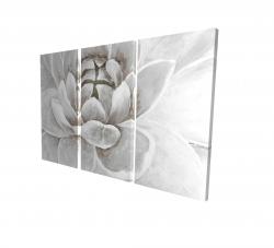 Canvas 24 x 36 - 3D - Delicate white chrysanthemum