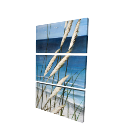 Canvas 24 x 36 - 3D - Wild herbs in the wind on at the beach