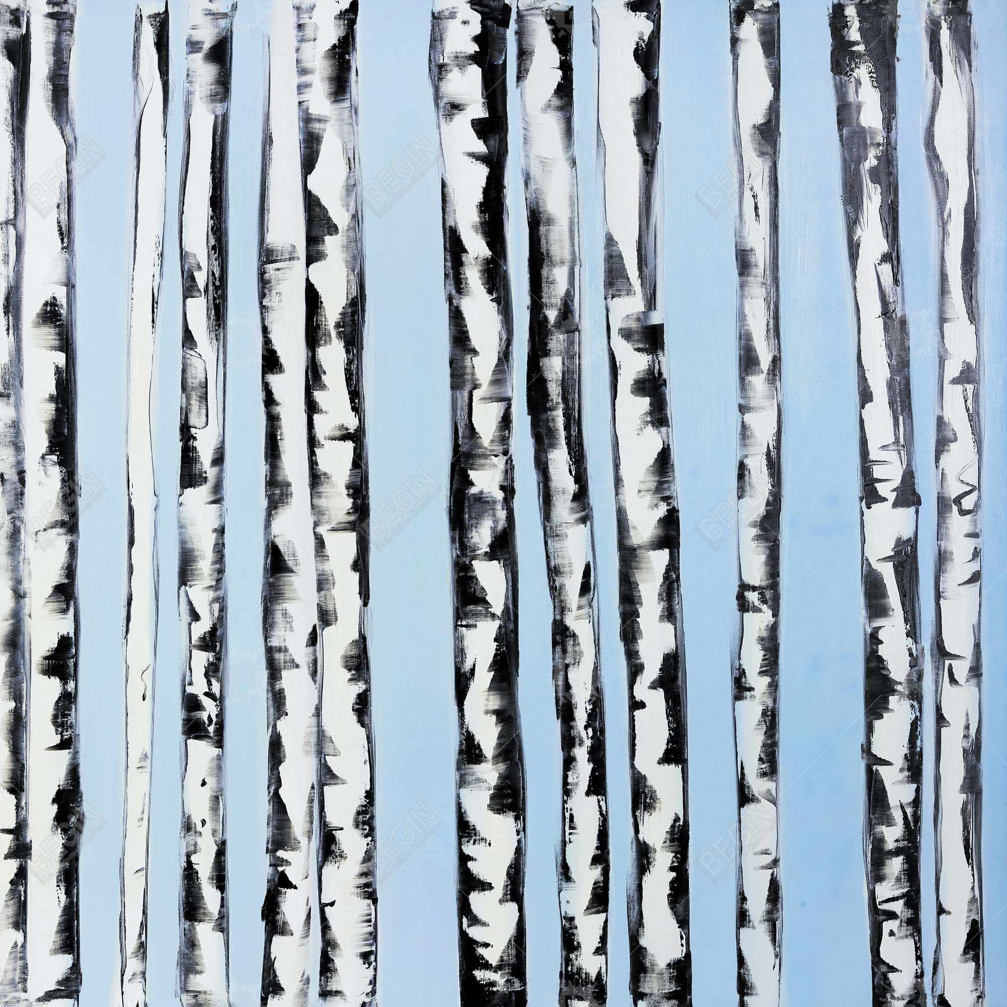 Birches on a blue background