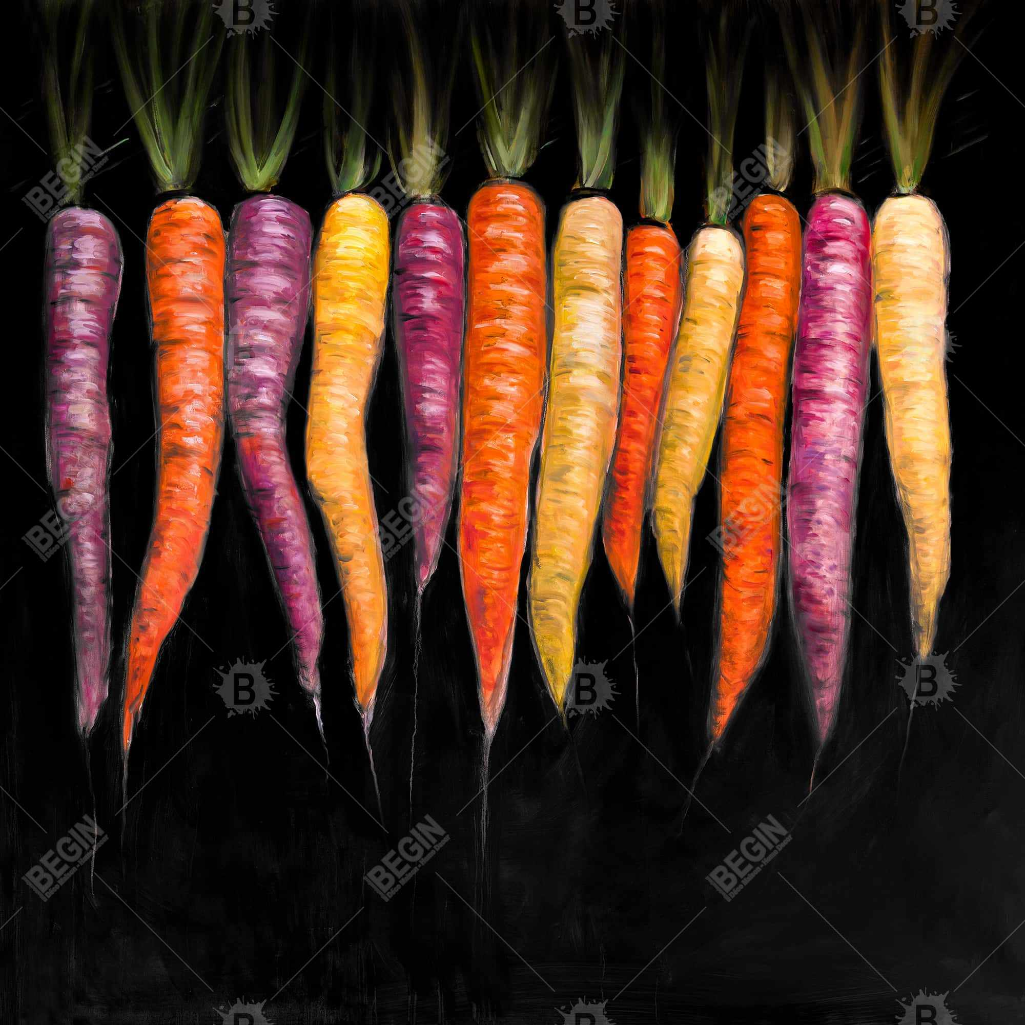 Carrots varieties