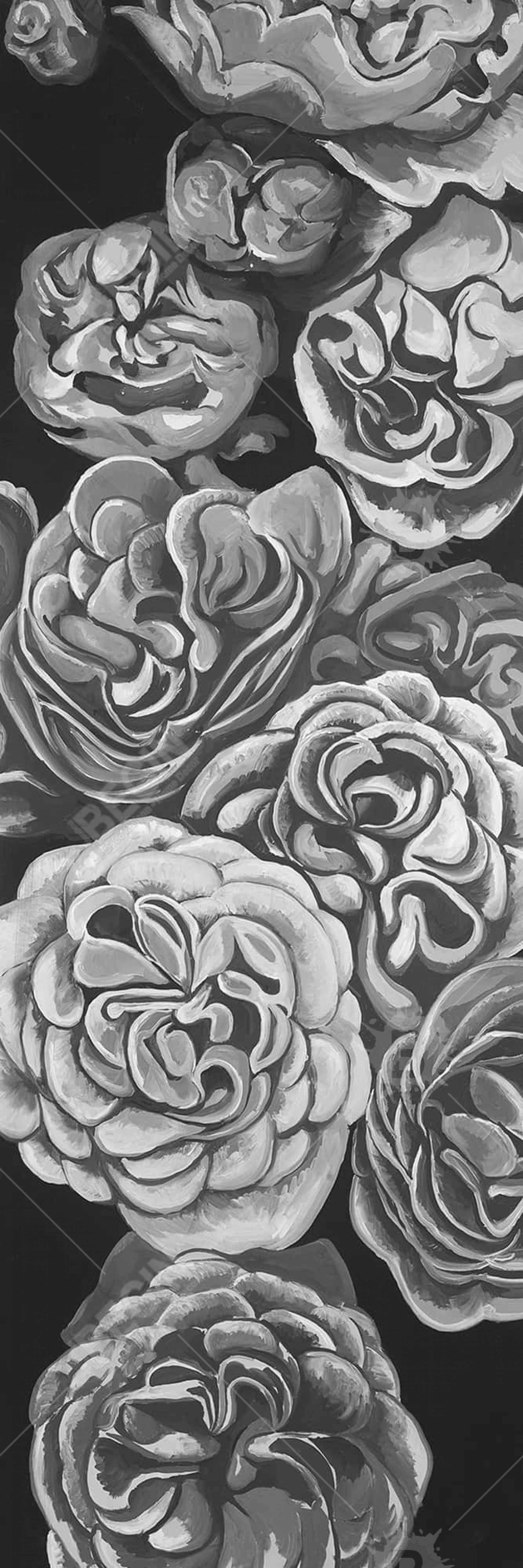 Grayscale dahlias