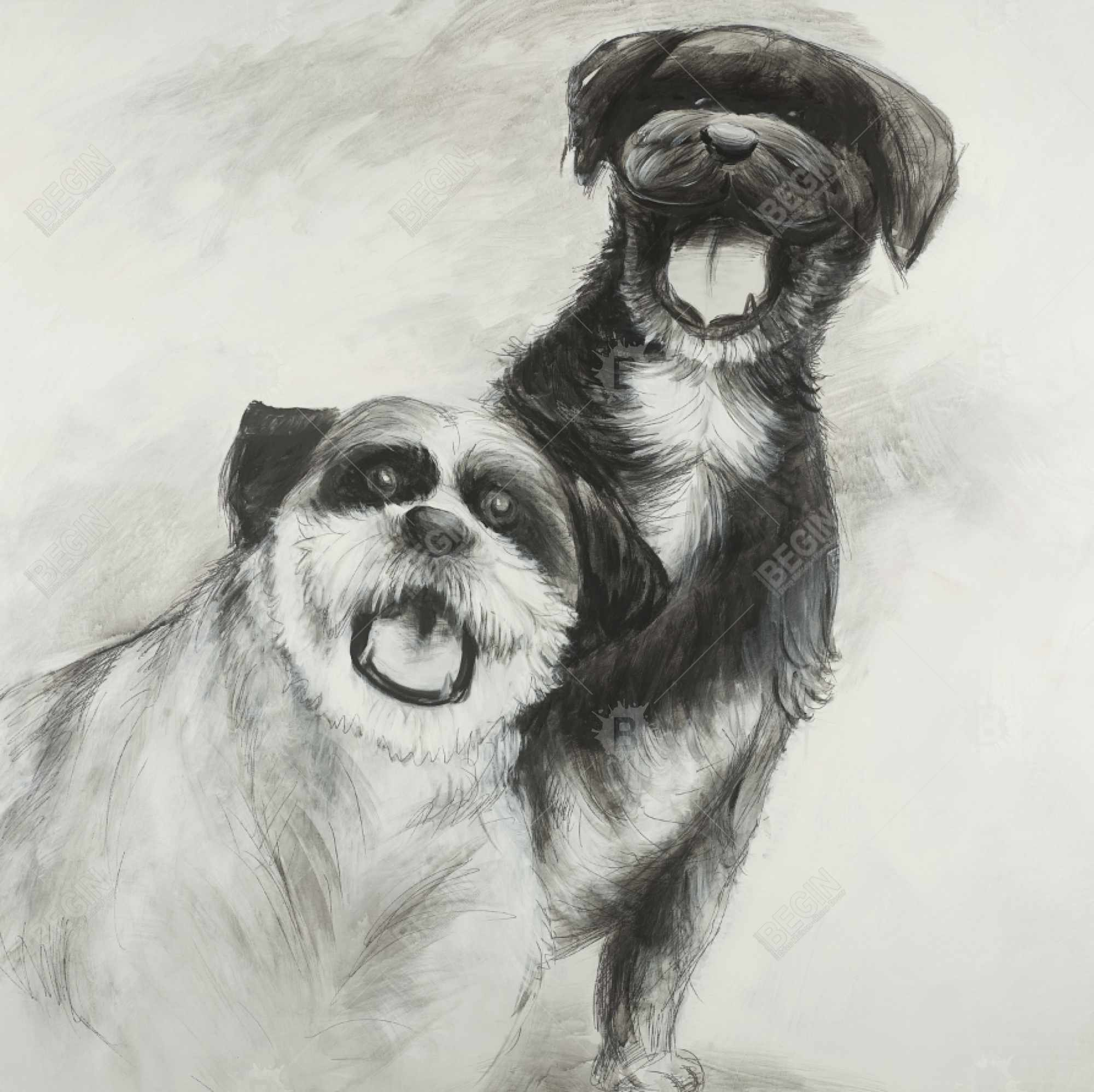 Happy dogs sketch