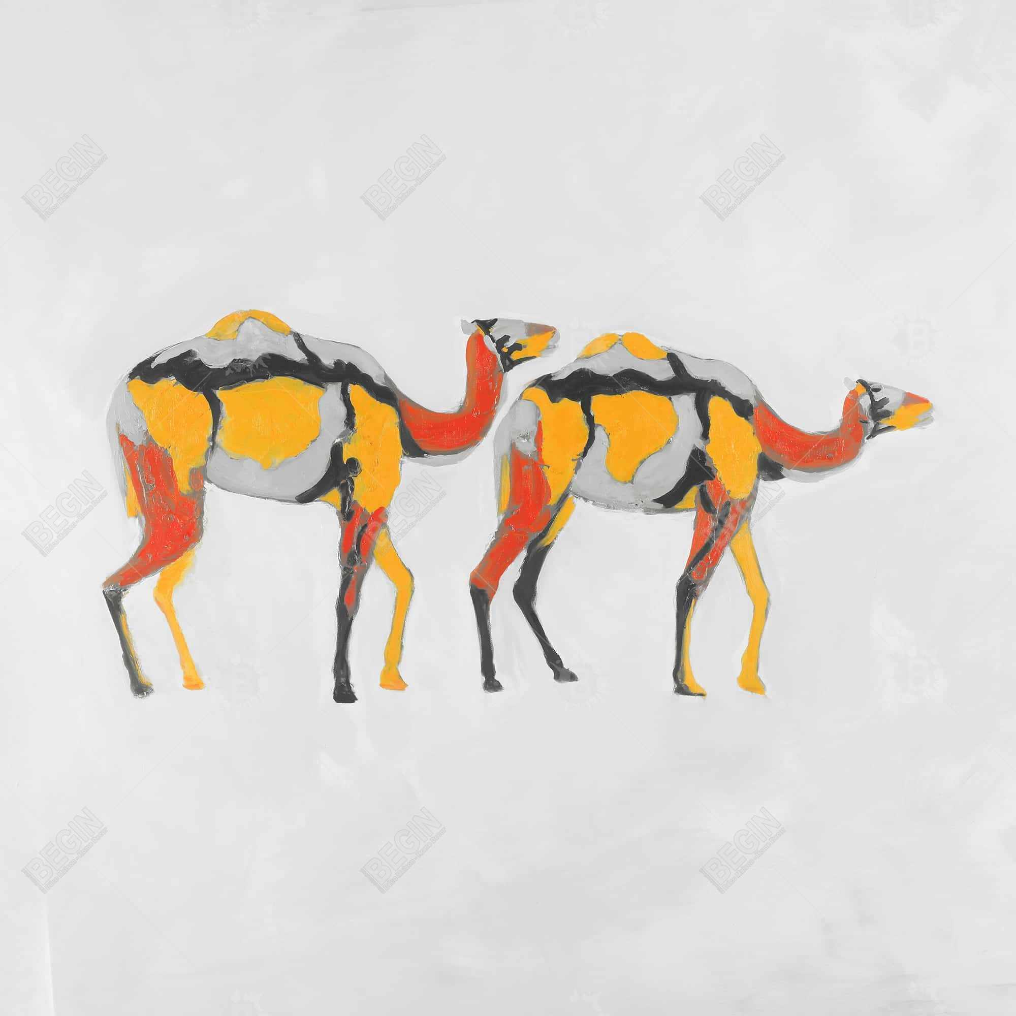 Abstract dromedaries