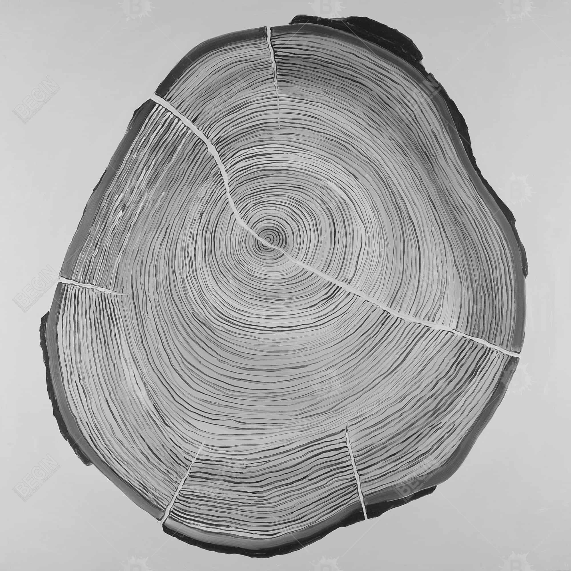 Grayscale wood log