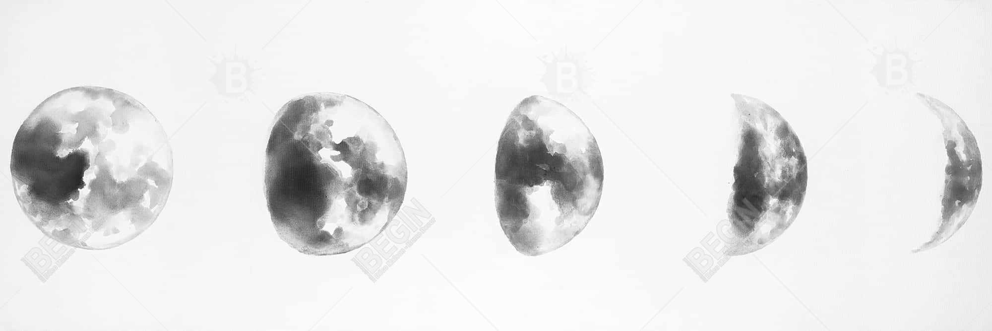 Black and white eclipse