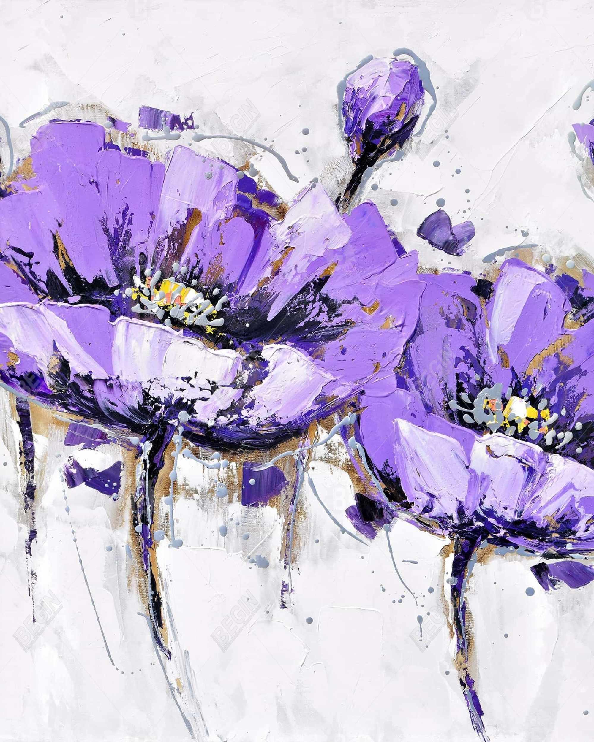 Purple anemone flowers