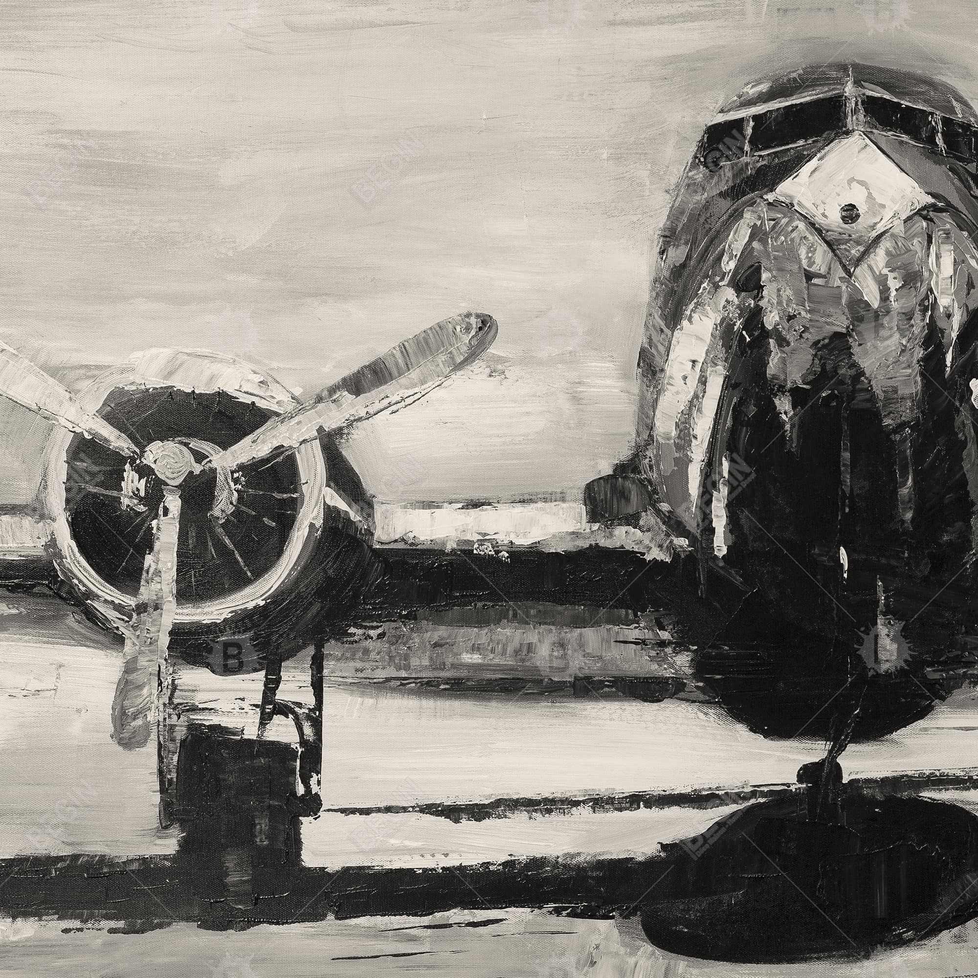 Sepia airplane