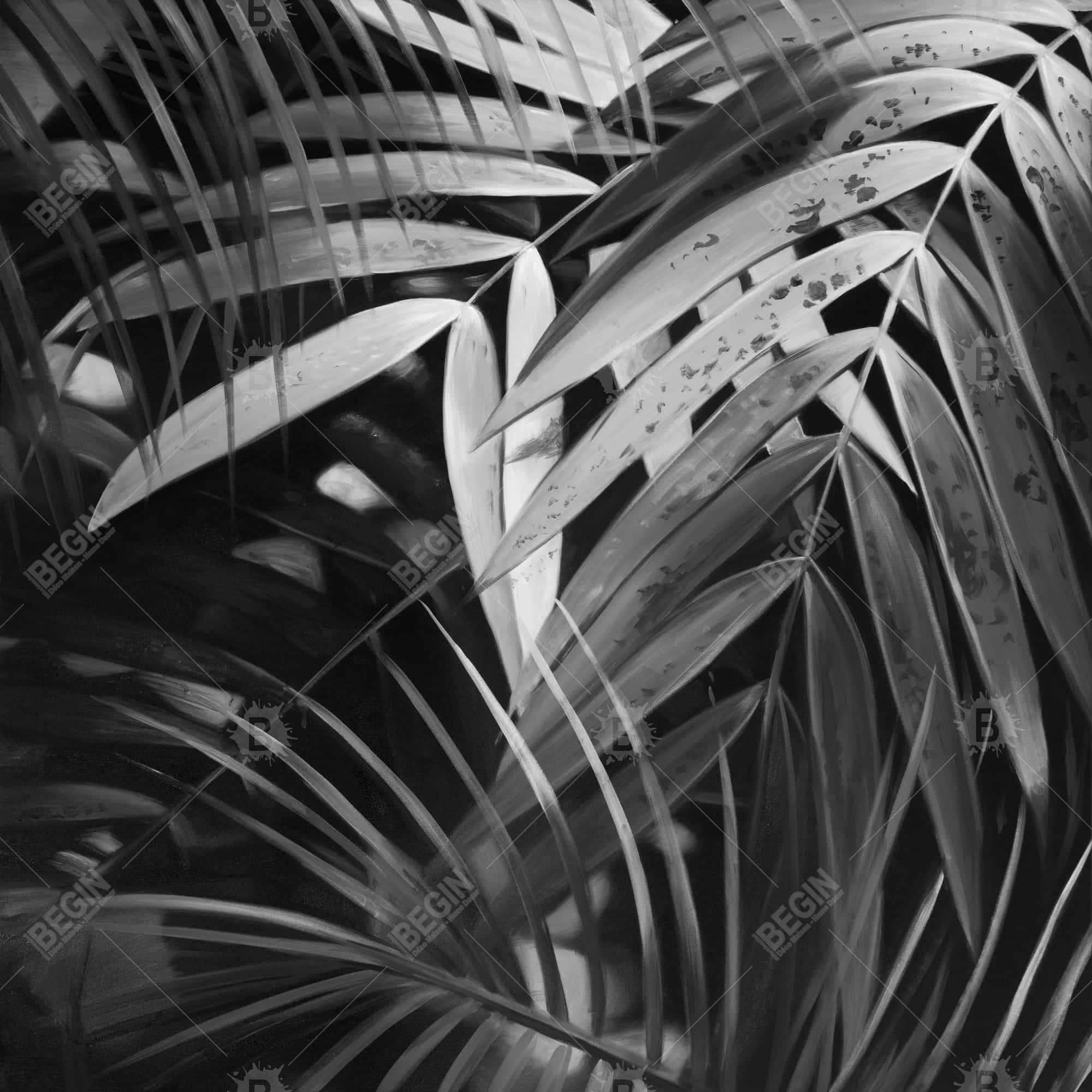 Monochrome tropicals leaves