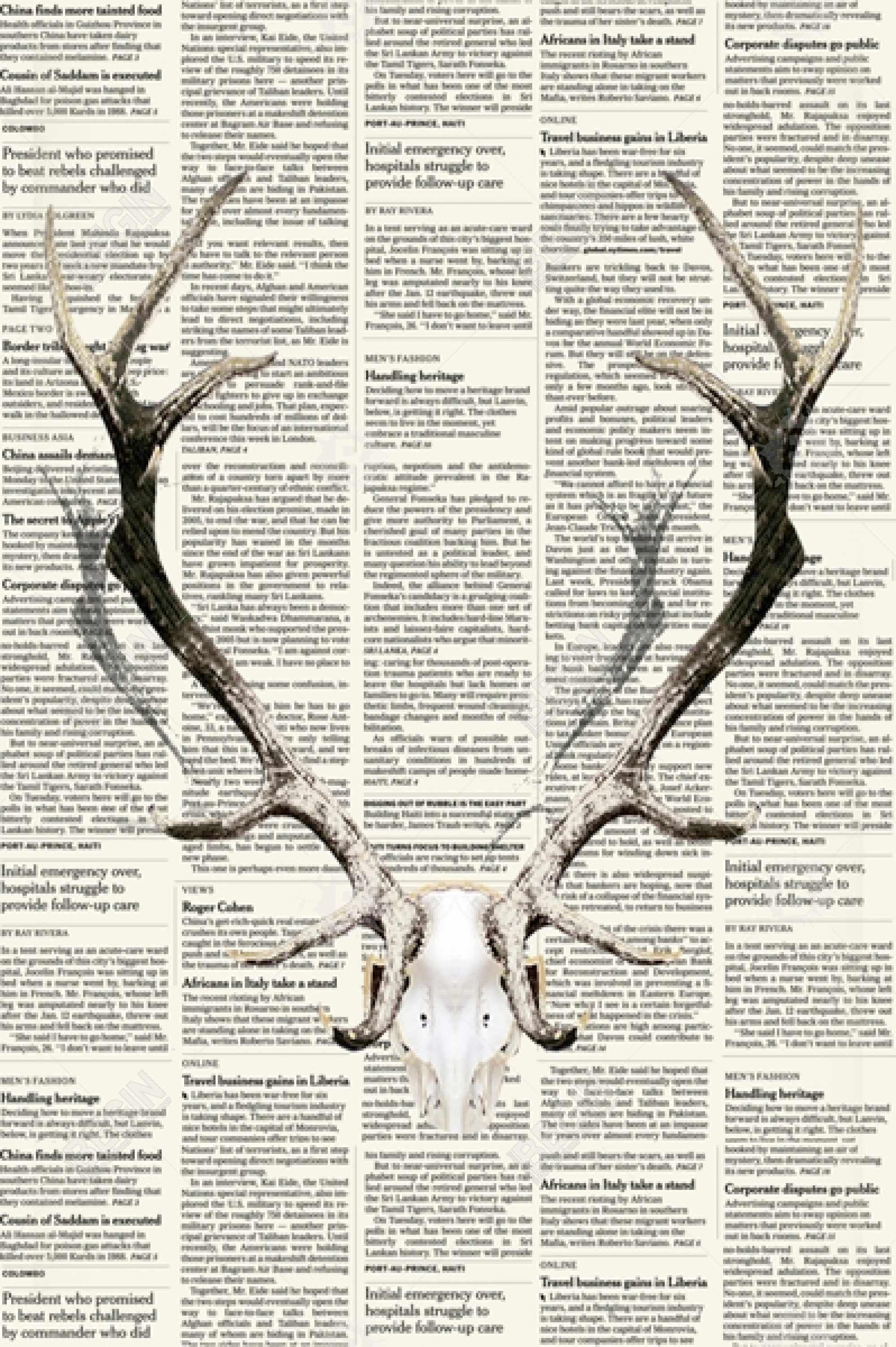 Deer horns on newspaper