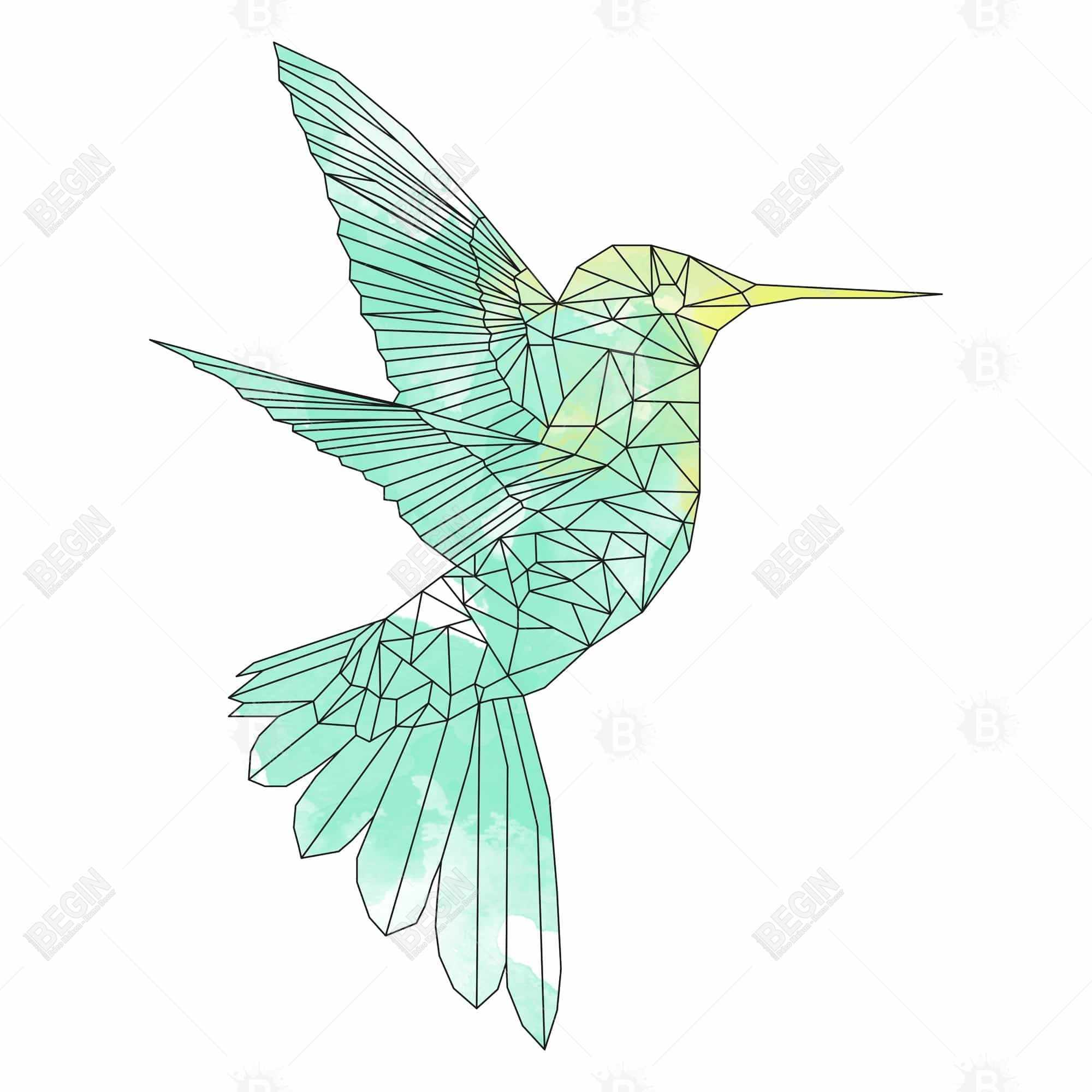 Geometric hummingbird