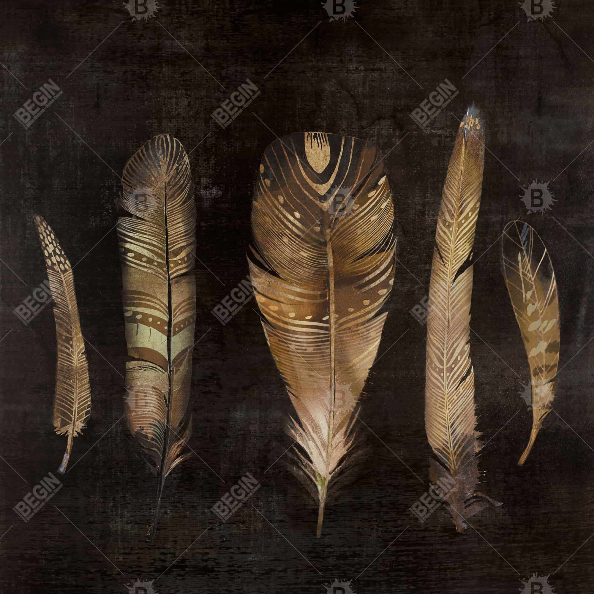 Brown feather set