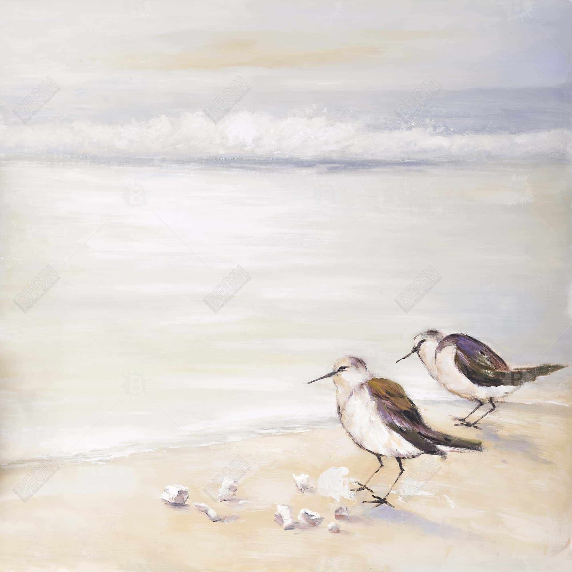 Two sandpipers on the beach