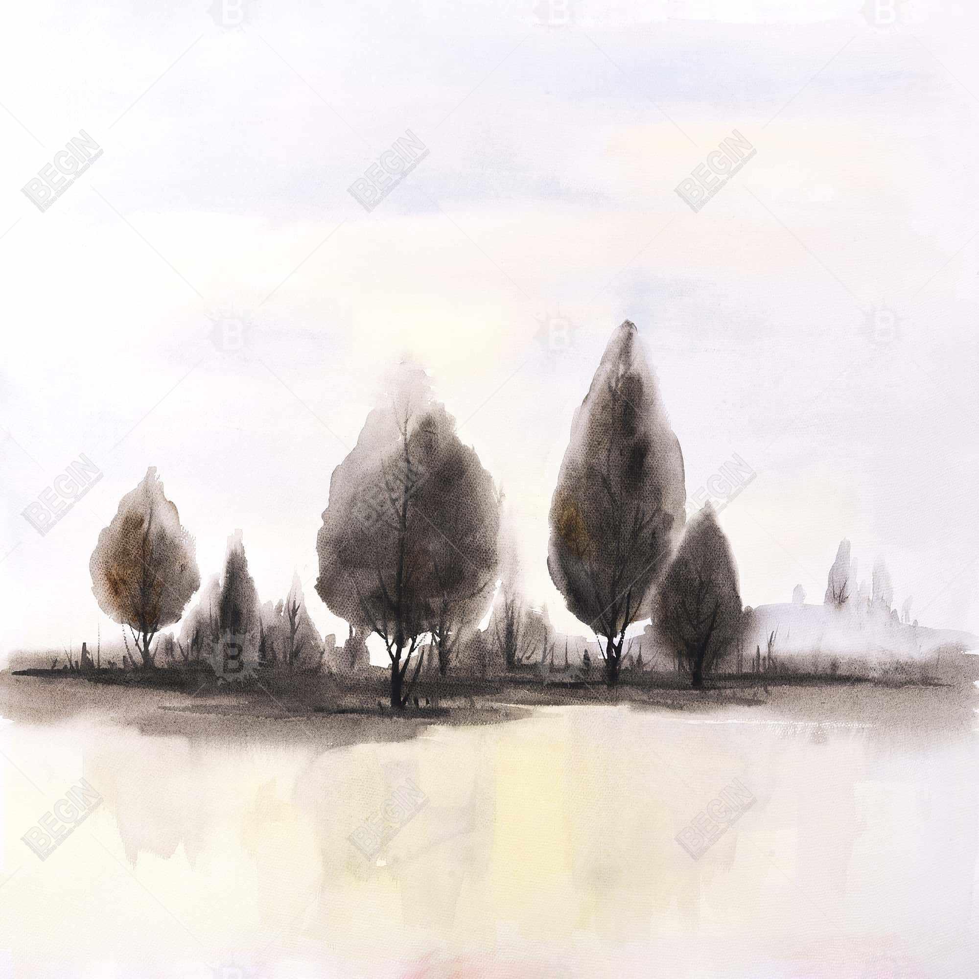 Landscape of trees