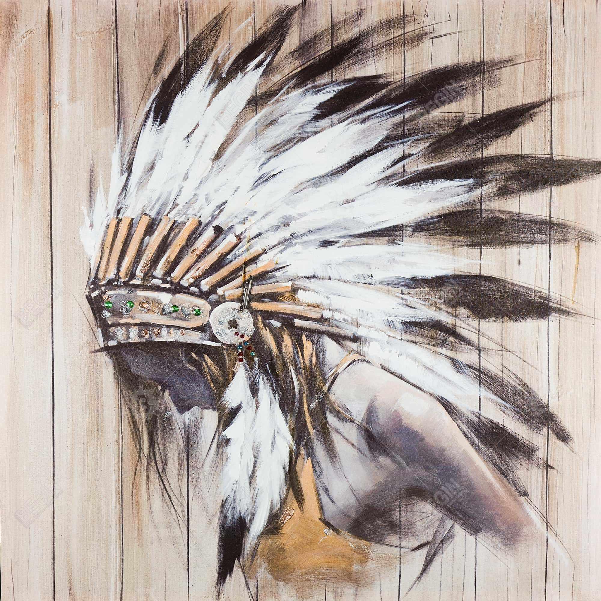 Indienne avec plumes