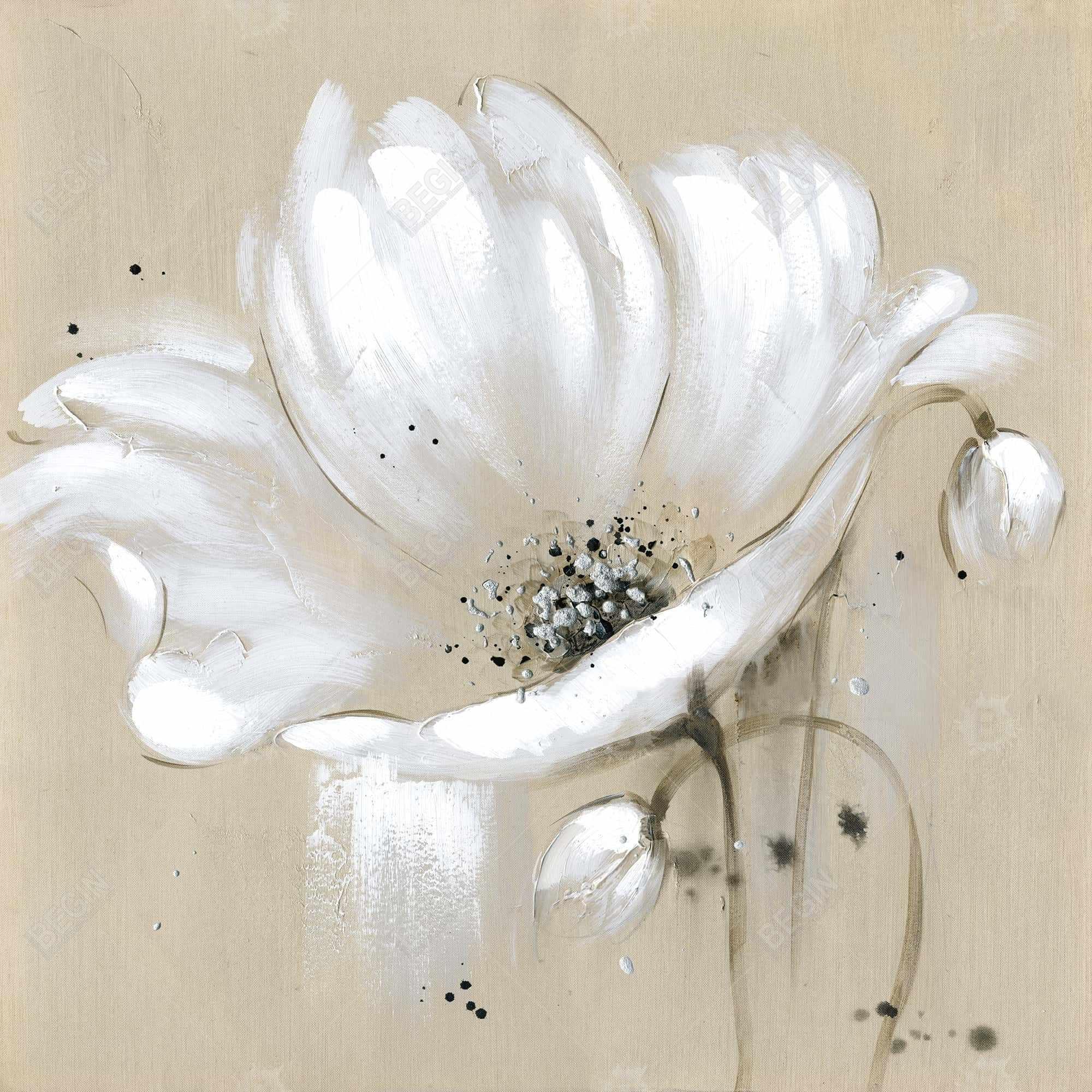 White abstract wild flower