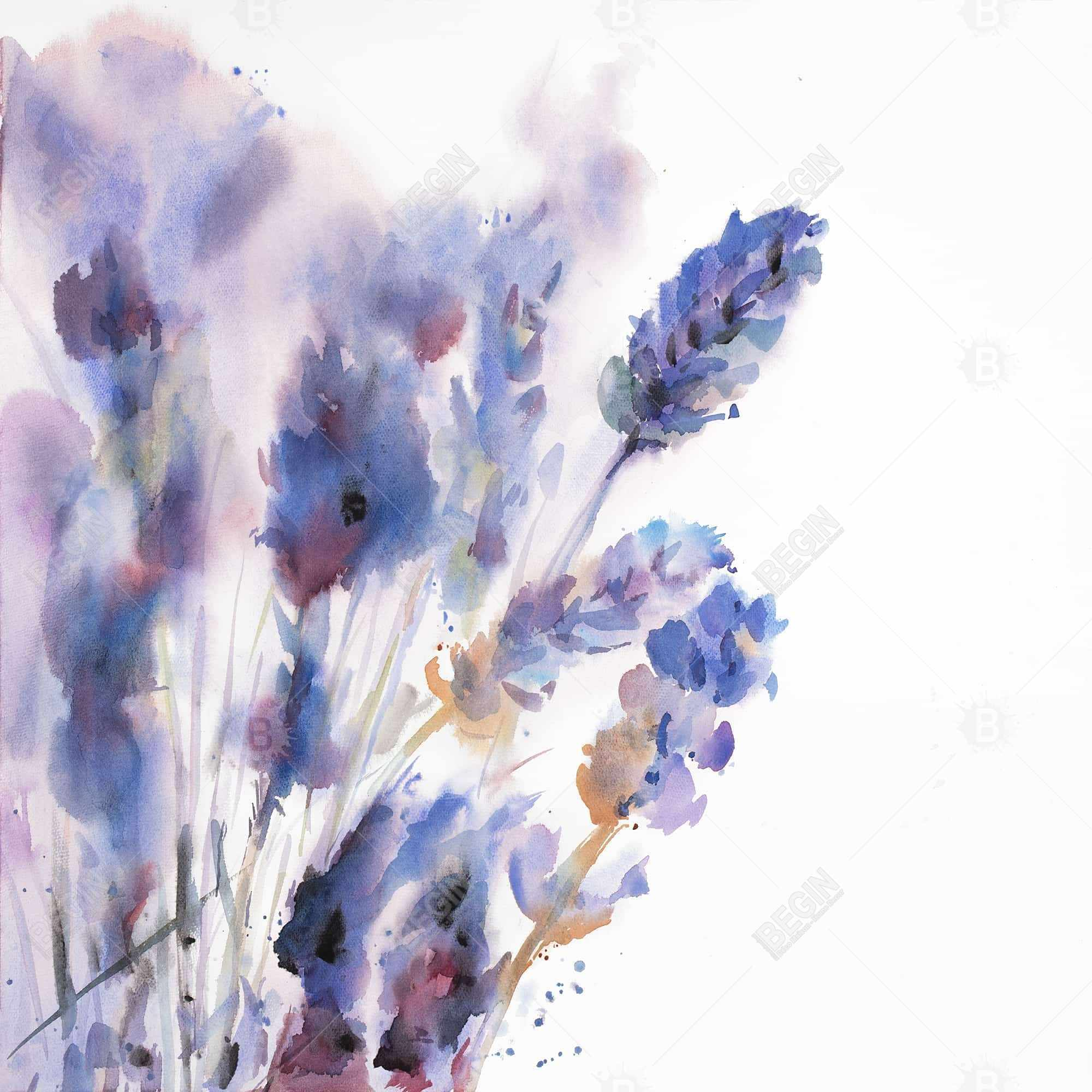 Watercolor lavender flowers with blur effect