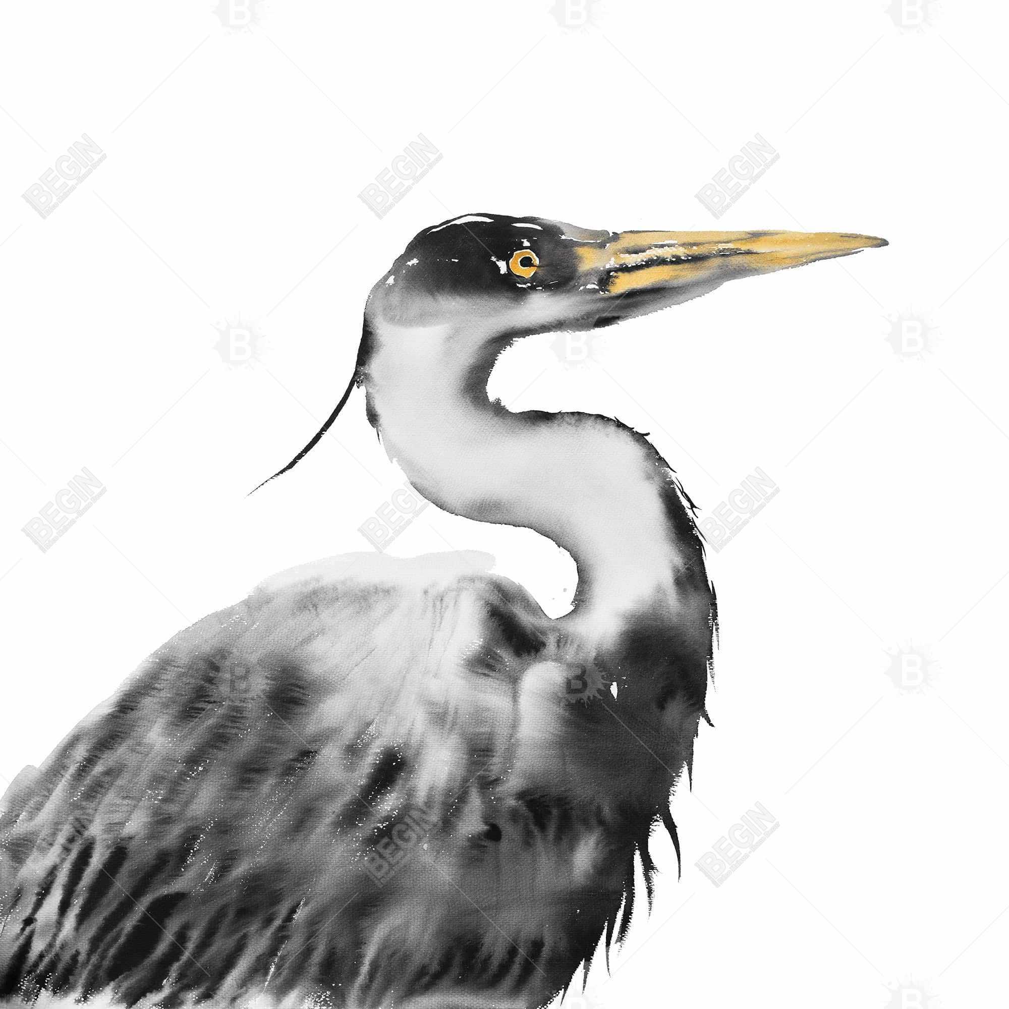 Great heron