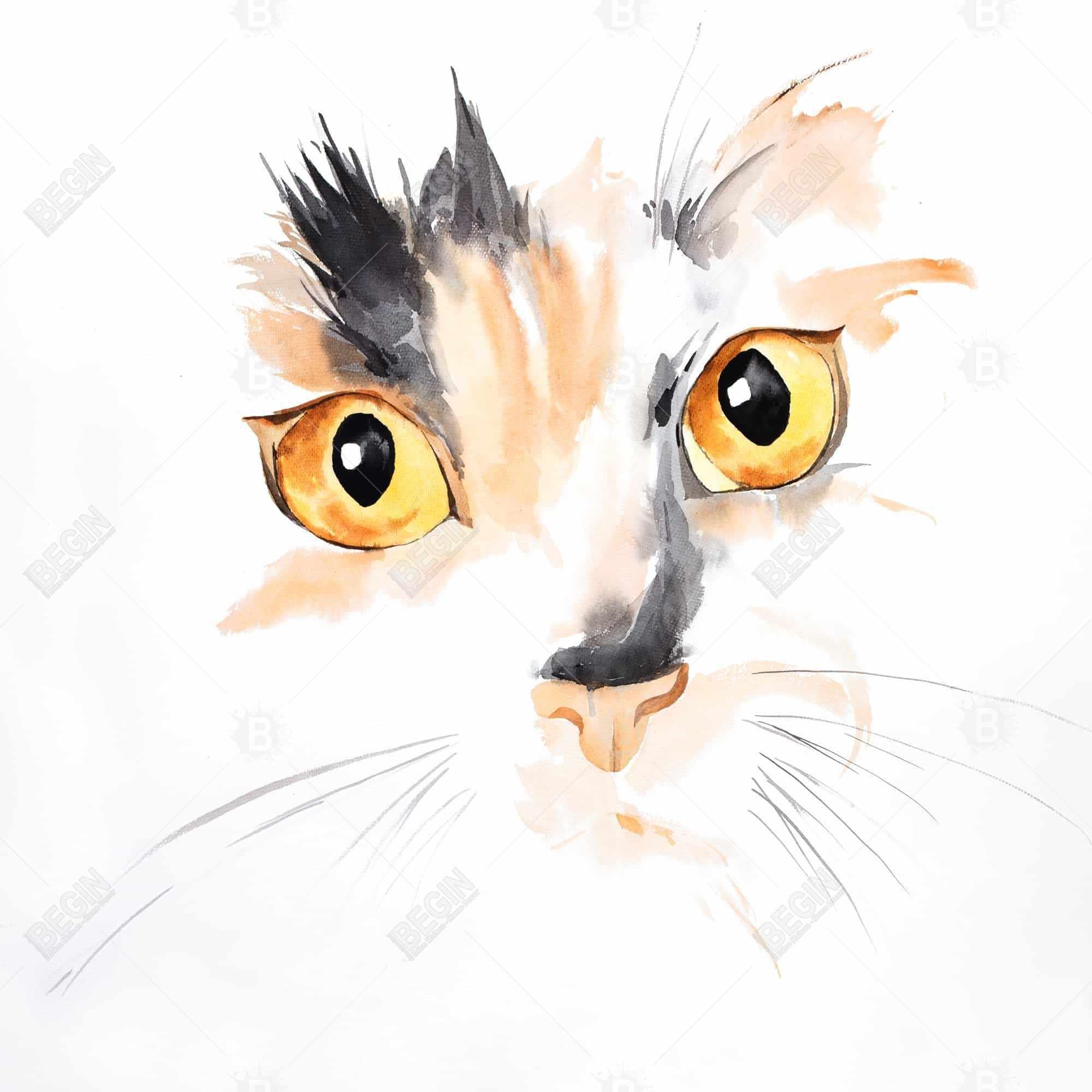 Watercolor cat face closeup