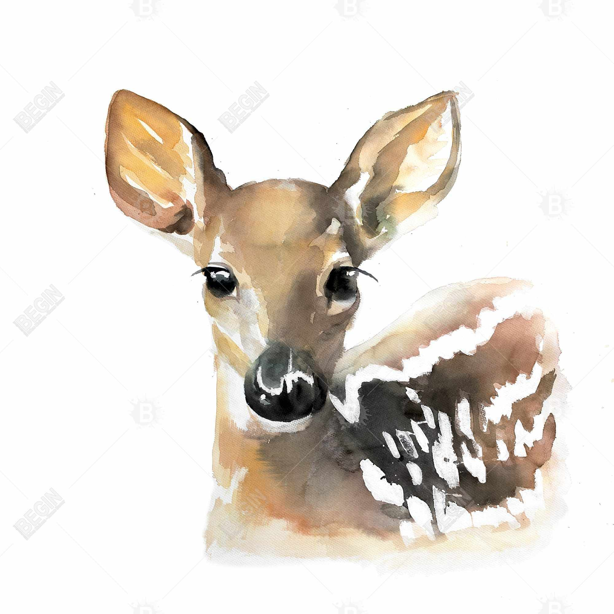 Watercolor fawn face