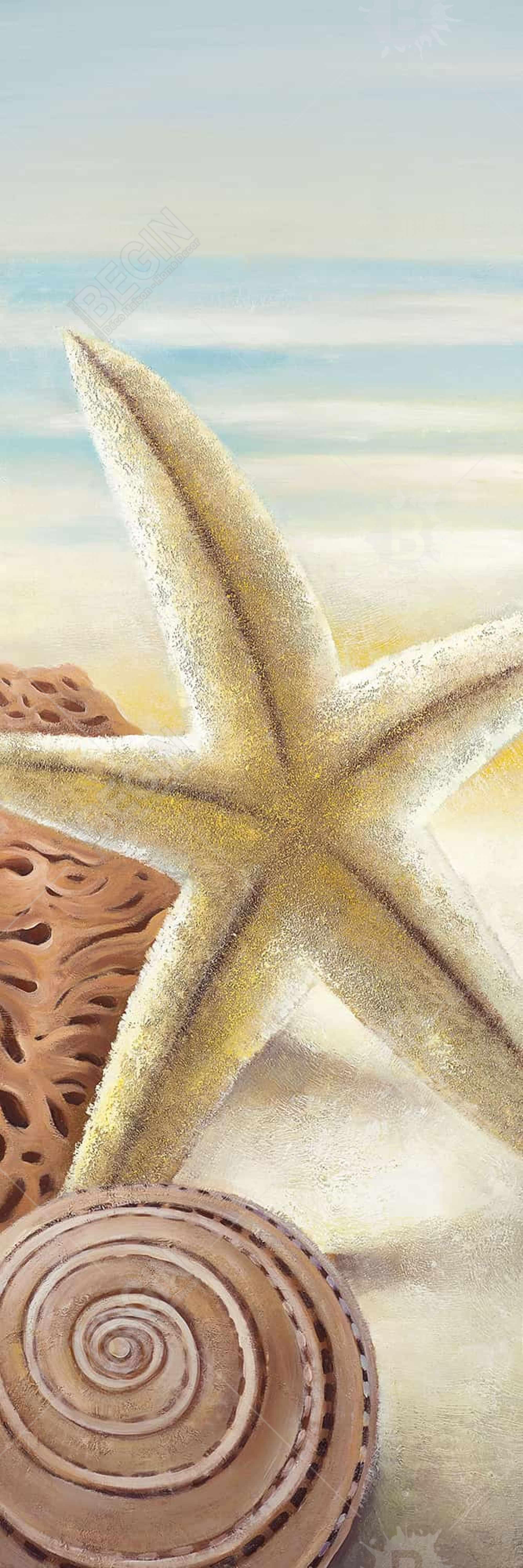 Starfish and seashells at the beach